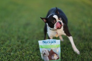 REVIEW: Nudges Premium Chicken Jerky Treats